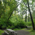 The park's day-use area.- Munson Creek Falls State Natural Area