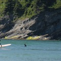 Surfers out in Smugglers Cove.- Short Sand Beach