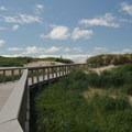 South Beach State Park's interpretive boardwalk.- South Beach State Park