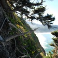View south from the top of Proposal Rock.- Neskowin Beach State Recreation Site