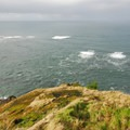 Looking out into the great Pacific Ocean.- Otter Crest State Scenic Viewpoint