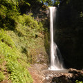 Double Falls, Silver Falls State Park.- Silver Falls, Trail of 10 Falls