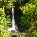 North Falls, Silver Falls State Park.- Silver Falls, Trail of 10 Falls