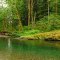 Swimming hole near the trailhead on Siouxon Creek.- Siouxon Creek Hike