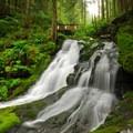 Horseshoe Creek Falls.- Siouxon Creek Hike