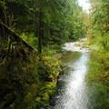 Deep pools near Chinook Falls.- Siouxon Creek Hike