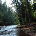 North Santiam River.- Tall Tree Campsites