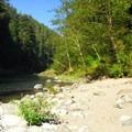 Small sandy beach along the Clackamas River.- Carter Bridge Day Use Area