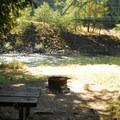 Campsite along the Clackamas River.- Carter Bridge Campground