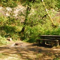 One of the campground's walk-in campsites.- Carter Bridge Campground