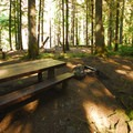 Lockaby Campground's walk-in campsite area.- Lockaby Campground