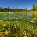 Hosmer Lake.- Hosmer Lake Canoe/Kayak