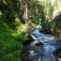 Tumalo Creek.- Tumalo Falls + Creek Hike