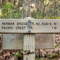 - Pacific Crest Falls Hike via Herman Bridge Trail