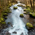 Herman Creek.- Pacific Crest Falls Hike via Herman Bridge Trail