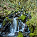 Dry Creek forms the falls.- Pacific Crest Falls Hike via Herman Bridge Trail
