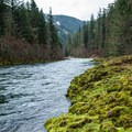 The Clackamas River.- Clackamas River Trail
