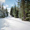 - Mud Creek Ski Loop