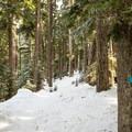 - Enid Lake Ski + Snowshoe Loop Trail