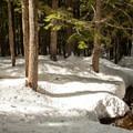 One of several small snow bridges in the loop.- Enid Lake Ski + Snowshoe Loop Trail