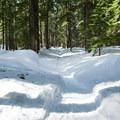 - Glacier View Ski + Snowshoe Loop Trail