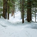 The route continues to join the end of the Enid Lake Loop.- Glacier View Ski + Snowshoe Loop Trail