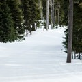 Check in at the Mount Hood Meadows Nordic Center for avalanche conditions.- Heather Canyon Ski + Snowshoe Trail