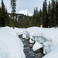 Clark Creek flowing off of Mount Hood.- Heather Canyon Ski + Snowshoe Trail