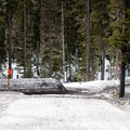 Crossing the access road requires ski removal. - Mt. Hood Meadows Westside