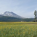 The South Sister (10,358') from Sparks Lake. Sparks Lake is not currently protected by the Wilderness designation.- Three Sisters Wilderness