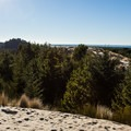View west over the Oregon Dunes National Recreation Area.- Honeyman State Park