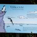 One of several interpretive signs that are well worth some extra time.- Cape Meares Lighthouse