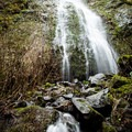 Oregon's own Niagara Falls.- Niagara Falls + Pheasant Creek Falls