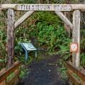 Seaside trailhead.- Tillamook Head Hike