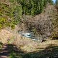 Trailhead across the road from the Brice Creek West Trailhead parking area.- Brice Creek Trail, West Trailhead to Lund Campground Hike