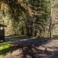 Cedar Creek Trailhead.- Brice Creek Trail, West Trailhead to Lund Campground Hike