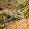 A bridge over a tributary to Falls Creek.- Falls Creek Falls