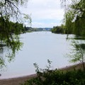 View south from the park toward the Willamette River.- George Rogers City Park