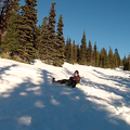 Sledding on the Glade Trail.- Glade Trail