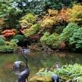 Upper pond.- Portland Japanese Garden
