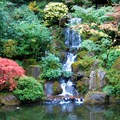 One of many waterfalls at the Garden.- Portland Japanese Garden