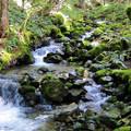 Running water below Silver Star Mountain.- Silver Star Mountain via Ed's Trail + Silver Star Trail