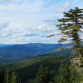 View north to Mount St. Helens (8,366').- Silver Star Mountain via Ed's Trail + Silver Star Trail