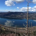 Looking out over the Columbia.- Angels Rest + Foxglove Way Hike