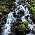 Waterfalls are the hallmark of hikes in the Gorge.- Rock of Ages Loop via Horsetail Falls Trailhead