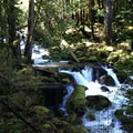 Oneonta Creek- Rock of Ages Loop via Horsetail Falls Trailhead