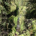 Oneonta Gorge.- Rock of Ages Loop via Horsetail Falls Trailhead