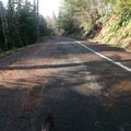 - Sandy Ridge Trail System