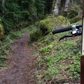Hide and Seek Trail.- Sandy Ridge Trail System