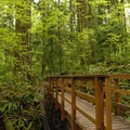 - Pittock Bird Sanctuary Nature Trail